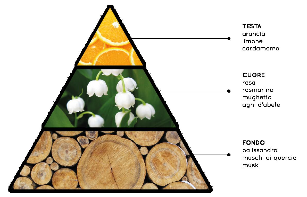 Febbre d'Amore - Fragranza per ambienti Fiorita, Fresca, Legnosa, Fruttata - QueLLiDelNaso.it