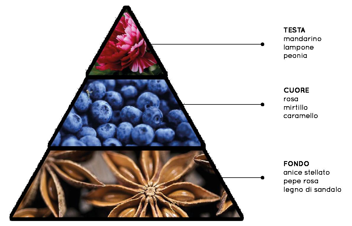 Giardino Incantato - Fragranza per Ambienti Fiorita, Fruttata, Dolce, Speziata - QueLLiDelNaso.it