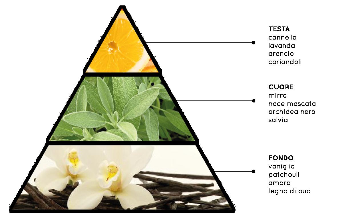 Orchidea e Legni Speziati - Fragranza per Ambienti Aromatica, Floreale, Legnosa, Muschiata - QueLLiDelNaso.it